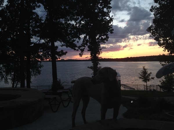 Buffalo Shores South - Where everyone (including the pets) await the awesome sunsets