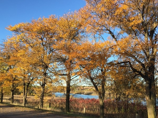 Fall at Foss Lake